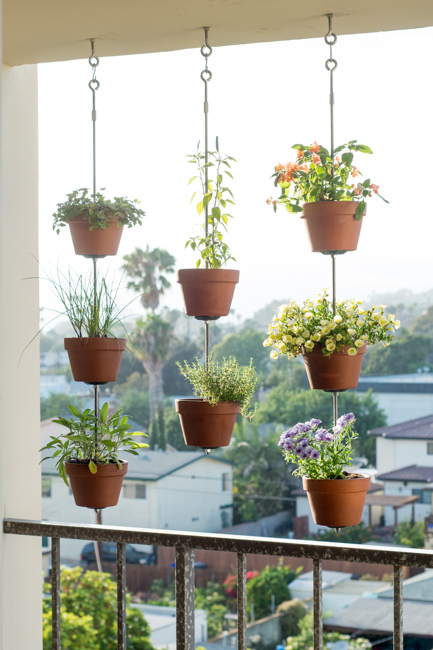 Talk about eye-catching, this idea from Horticult will make a definite statement on an apartment balcony.<br />See how they did it »<br />