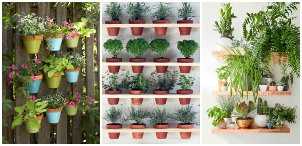 Vertical Gardening Ideas 4 create a living wall of leaves Vertical Garden Decor Ideas How To Design A Vertical Garden