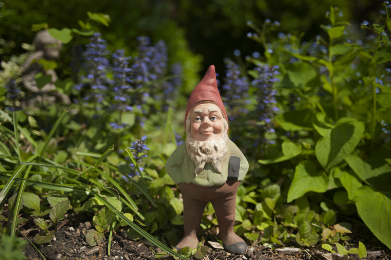 Gnome In Garden: 6 Things You Didn't Know About The Figurines