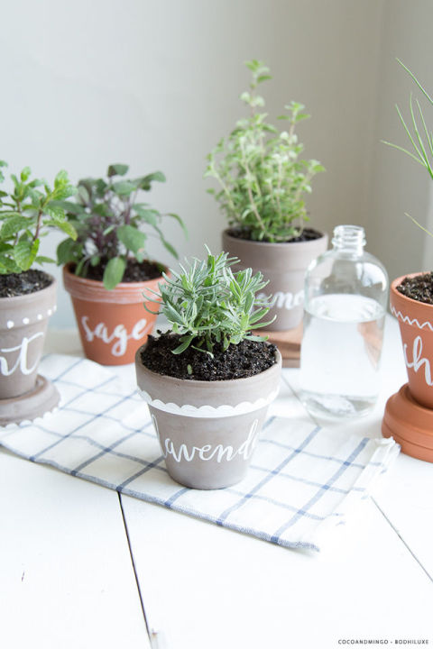 Paint herb names on classic terra cotta pots will keep you from accidentally throwing in sage when you needed a handful of basil.<br />Get more from Bodhi Luxe »<br />