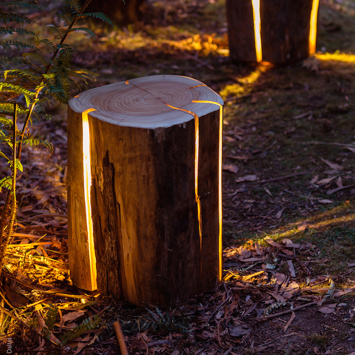 Tree Stump Lights - Magazine cover