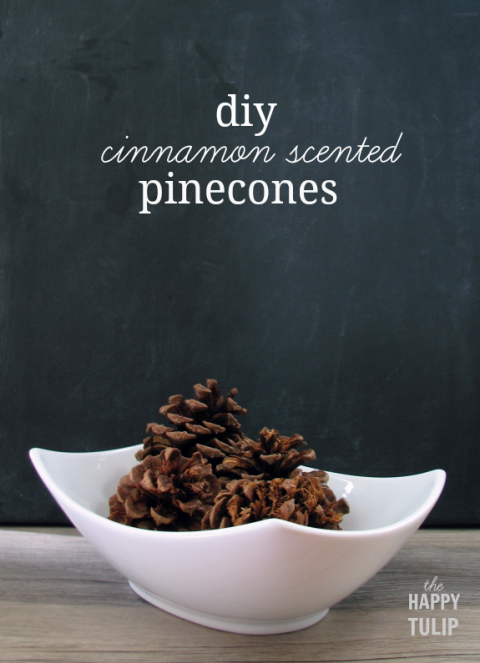 Pinecones easily fill a bare space on your bookcase in fall, but a little cinnamon essential oil is the surprise that keeps on giving all season long. Get the tutorial at The Happy Tulip »