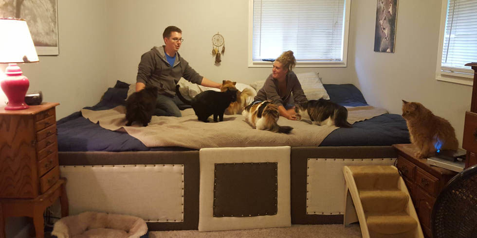11 Foot Bed For Seven Pets Bed Big Enough For Pets