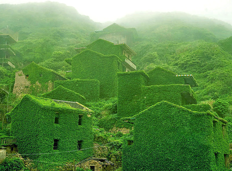 "This fishing village (photographed by Jane Qing) on China's Yangtze River isn't your normal forgotten town — its lush buildings covered in ivy and greenery is surprisingly tranquil and striking. The Chinese website where they first surfaced called the area the ""Wizard of Oz's dream."""