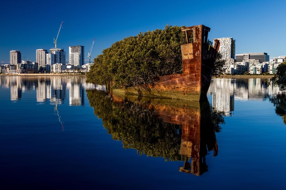 This SS Ayrfield was built in 1911 and retired in 1972 in the Homebush Bay, which is west of Sydney and basically a ship graveyard. But it's unique to the other abandoned vessels, because it's since sprouted majestic mangrove trees and greenery.