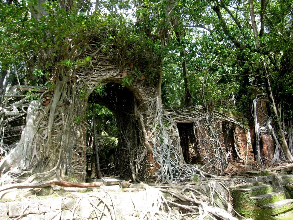 Located in South Andaman, India, this island was once a British administrative center for the Indian Penal Settlement. However, after it was abandoned it became overgrown with wild Ficus and now it has a stunning Jungle Book vibe.
