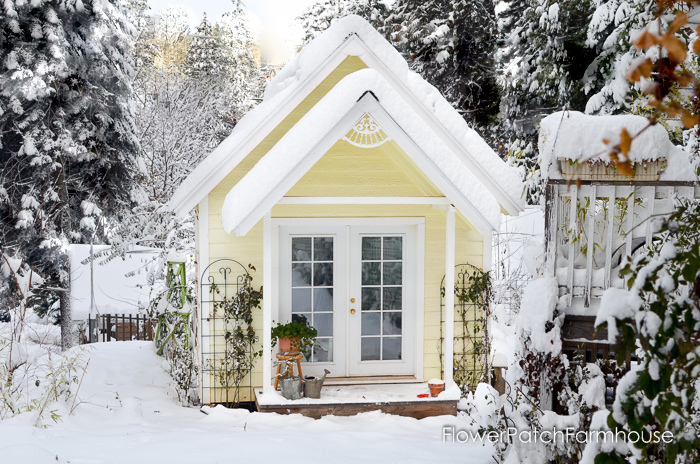 Snow covered outdoor shed