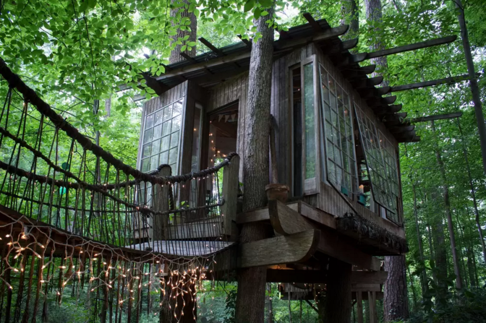 treehouse with rope bridges