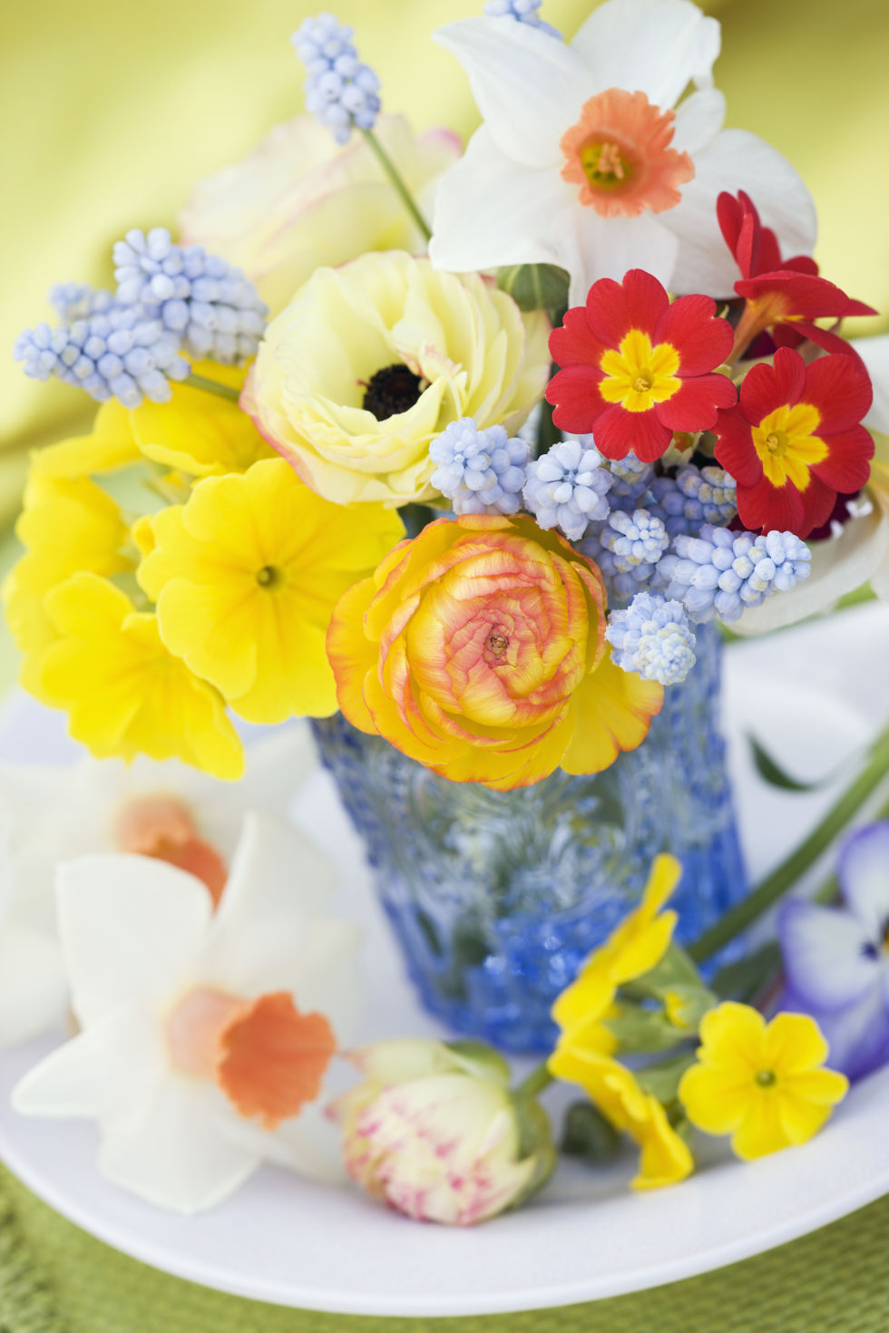 70+ Beautiful Spring Flowers - Pretty Pictures of Spring Flower ...