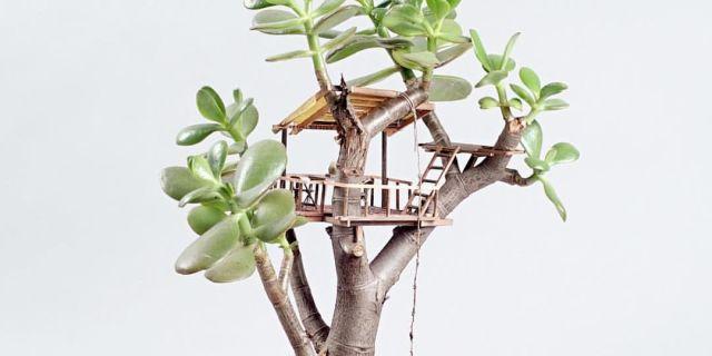 Miniature Tree House tiny tree houses for houseplants - adorable mini houseplant tree