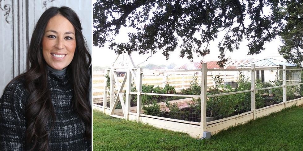 joanna gaines gardening advice   gardening advice from