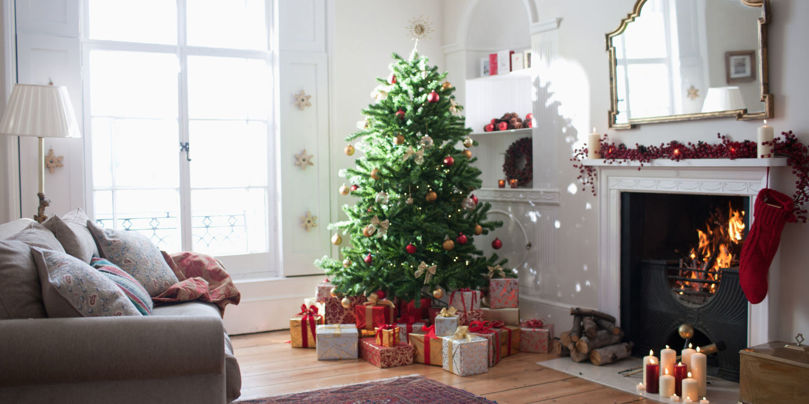 When Do Christmas Decorations Come Down In Spain : Why do we still cut down christmas trees