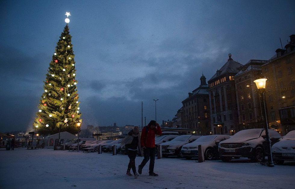 Pics Of Christmas Trees magical christmas trees worth seeing - christmas tree virtual tour