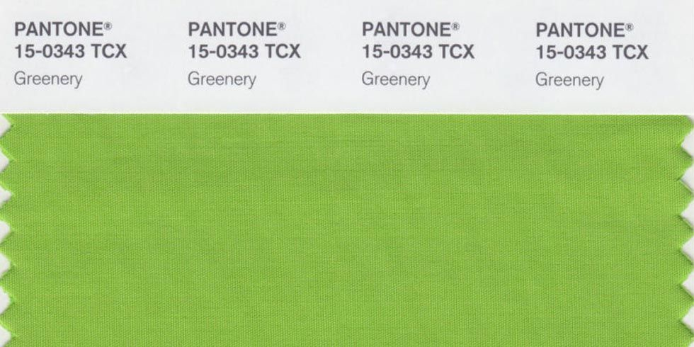 Pantone Color Of The Year pantone receives twitter backlash for their color of the year
