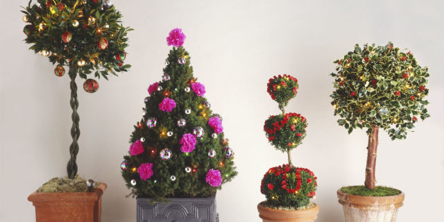 four outdoor christmas tree decorations including a bay tree decorated with baubles in red and gold - Outdoor Christmas Tree Decorations