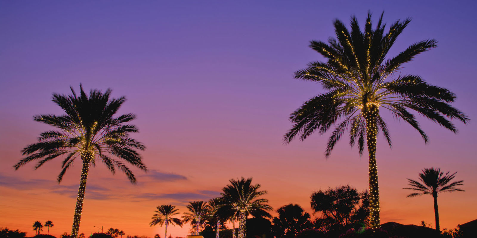 Why Florida Is The Best Place To Spend Christmas