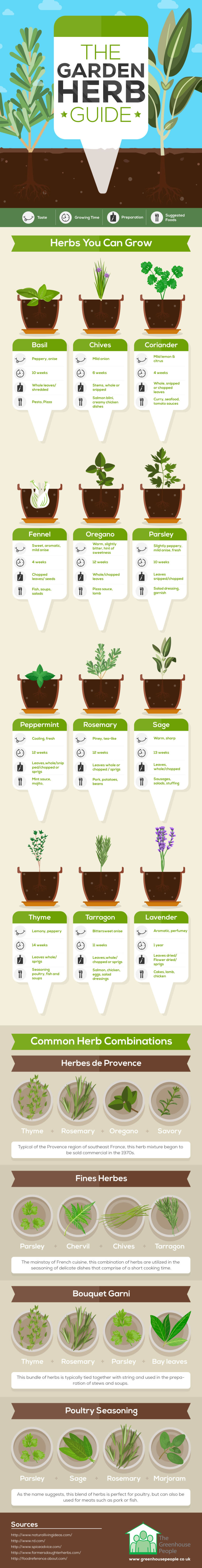 This One Infographic Will Change Your Homegrown Herb Game