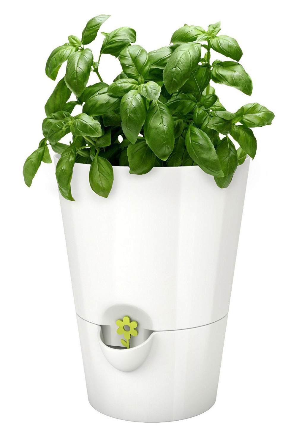 herb indoor planter growbottle indoor herb garden kit wine b