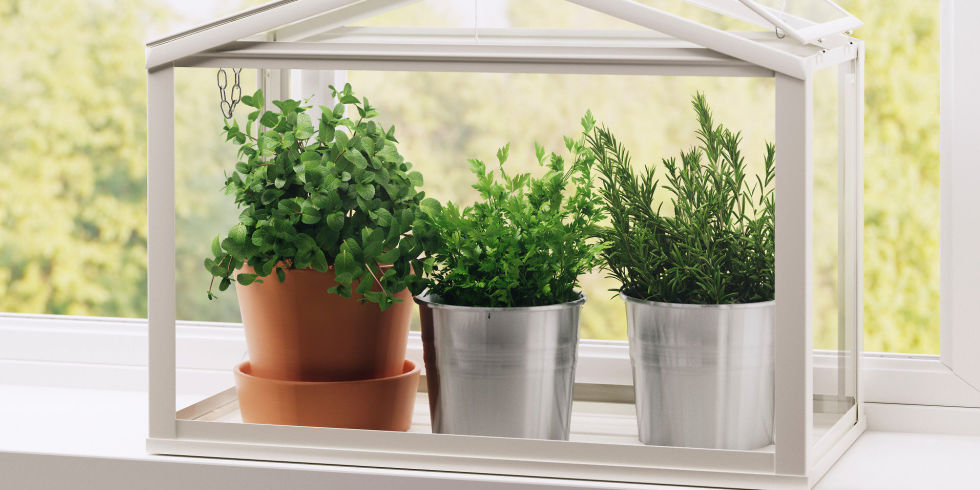 Indoor Herb Garden Ideas 15 indoor herb garden ideas - kitchen herb planters