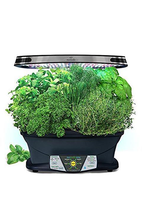 15 Indoor Herb Garden Ideas - Kitchen Herb Planters