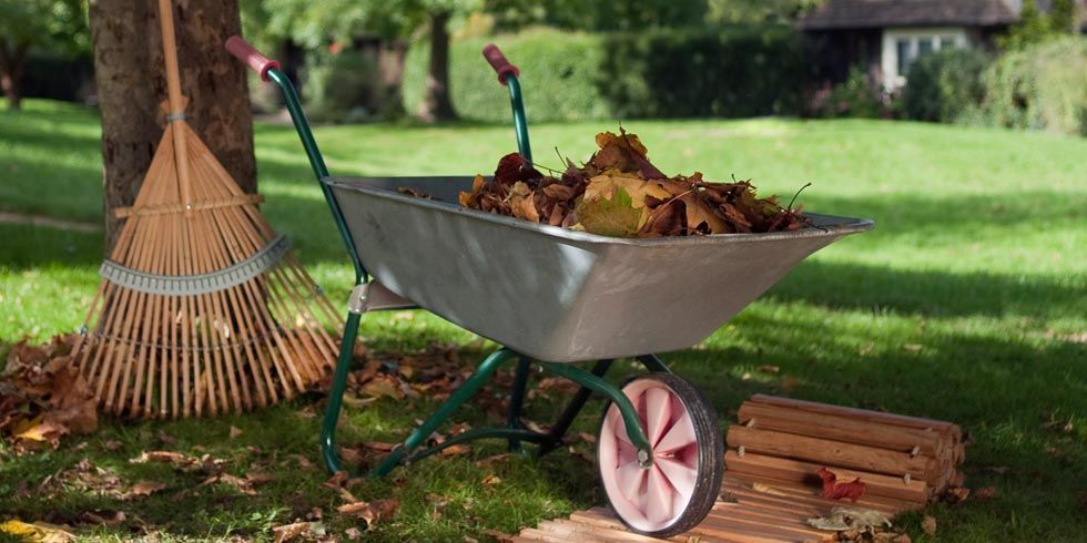 Fall Landscaping Tips fall landscaping tips & ideas - how to take care of your yard in