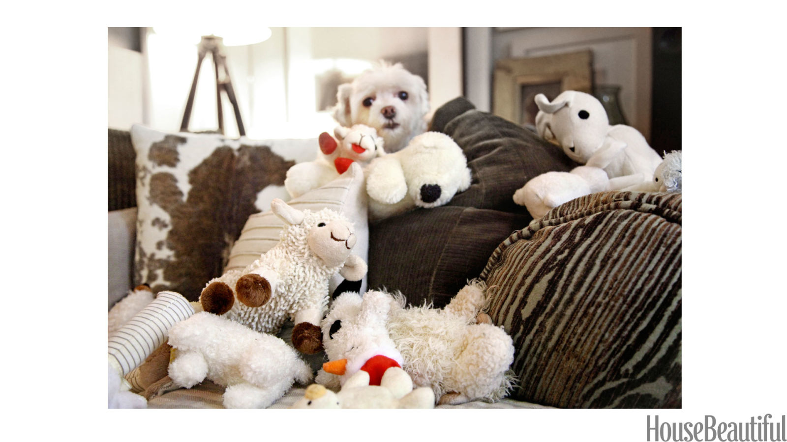 Lamb Chop Dog Maltese Dog And Lamb Toys