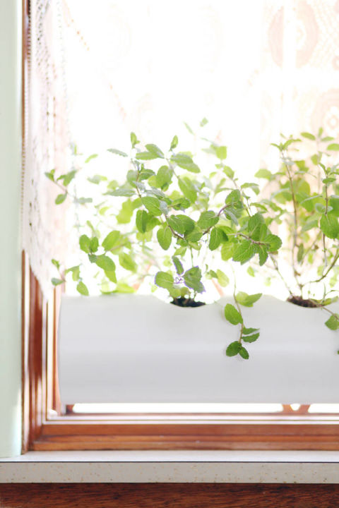 The key to successful herb growth is simple: light. But even if you have a free window, you might not have enough sill space. A Beautiful Mess's inventive solution uses PVC pipe to create an in-window planter.<br />