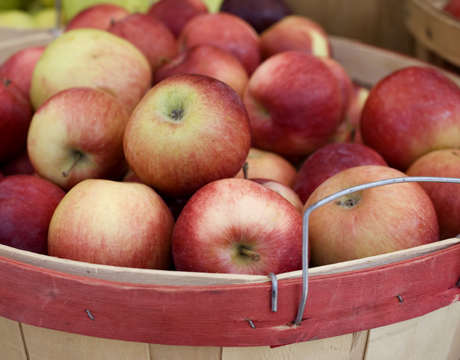 One of the best parts of the fall season is going apple picking. Take a look at the beautiful red paints that match this bushel of red apples.