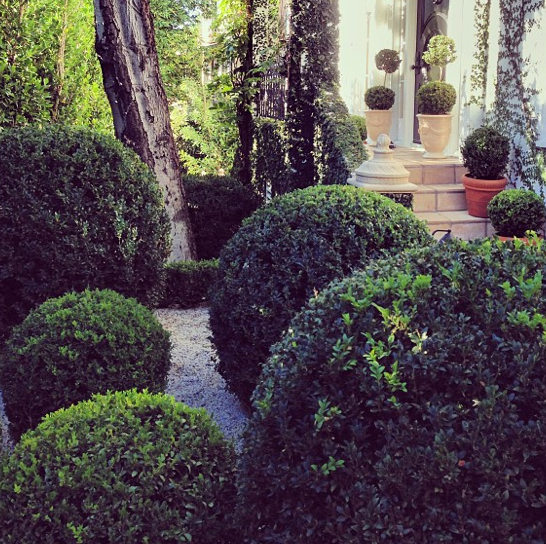 gorgeous gardens gardeners on instagram