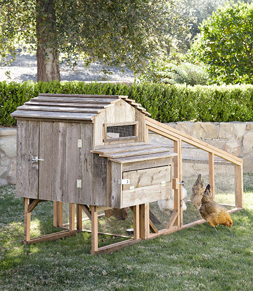 Backyard chicken coops cool chicken coops for sale for Cool chicken coop plans