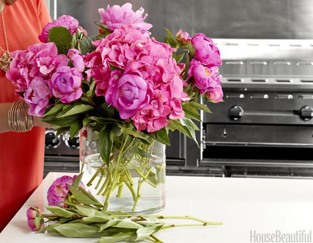 Peonies Season peony flower care - peony season