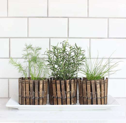 24 Indoor Herb Garden Ideas To Look For Inspiration: 11 Indoor Herb Garden Ideas