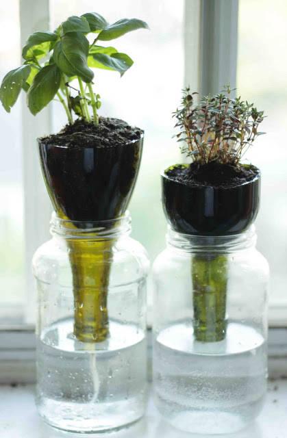 11 Indoor Herb Garden Ideas Kitchen Herb Planters