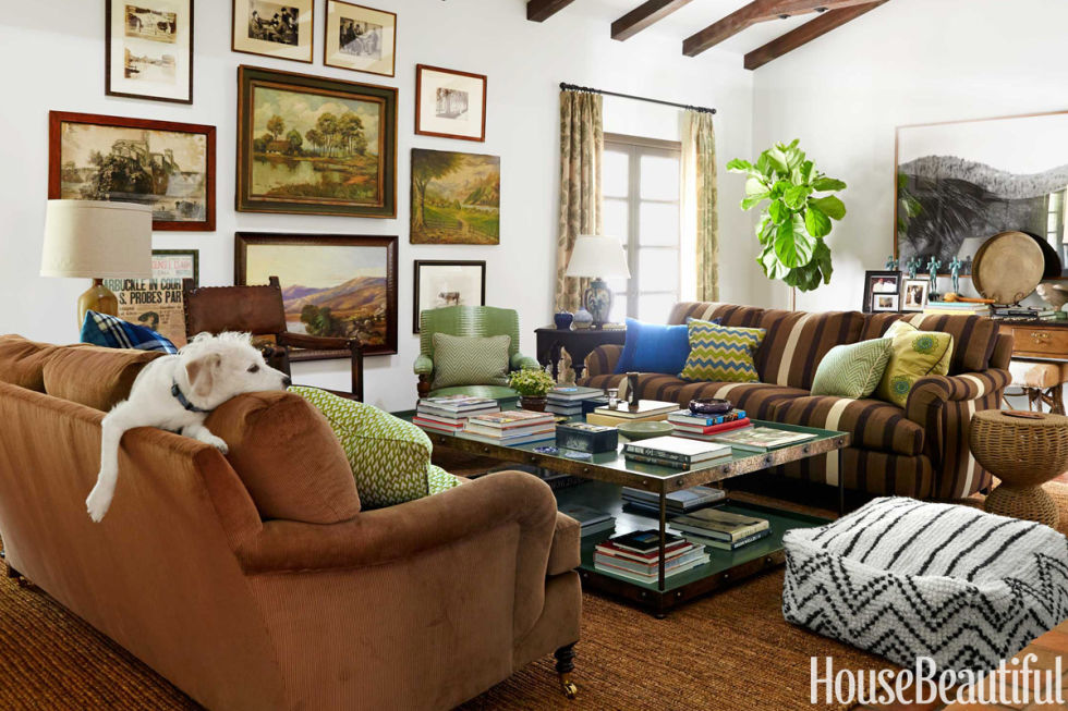 Modern Dog. Adorable Dogs and Cats in Designer Rooms
