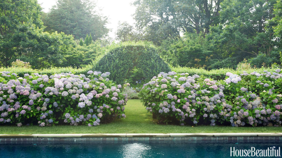 Rows of hydrangeas and hedges offer a beautiful alternative to typical garden fences, like this East Hampton landscape designed by Robert Stilin.<br />